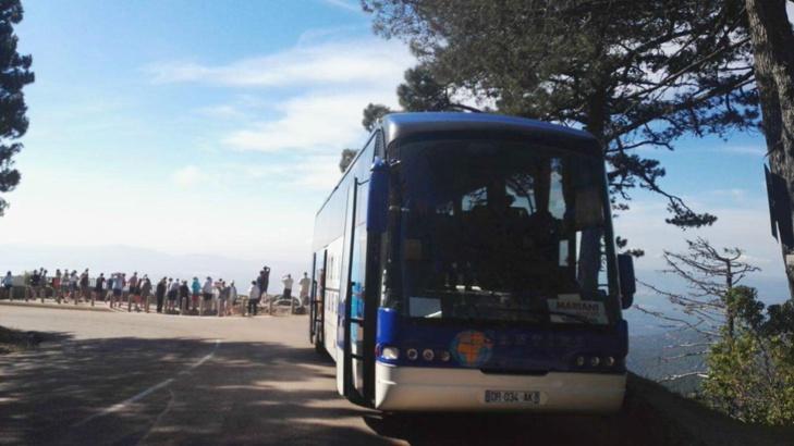 Comment visiter la forêt de l'Ospédale ? Avec Autocars SANTINI !